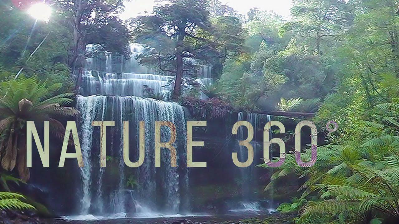 photo 2018 05 17 22 32 32 - فیلم 4k واقعیت مجازی آرامبخش طبیعت