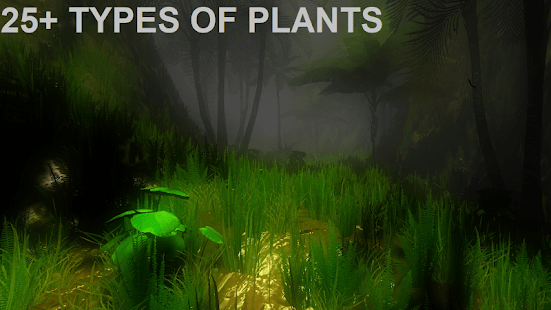 The Walk VR | Beautiful jungle World