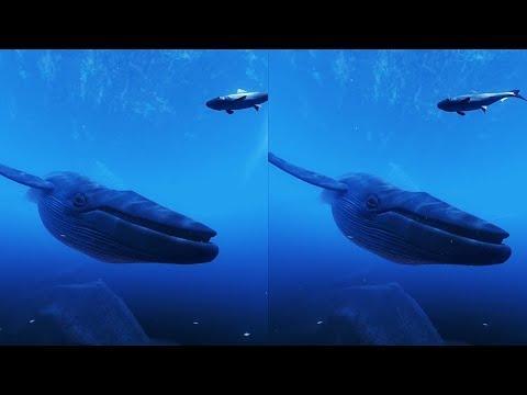 0 - فیلم سه بعدی واقعیت مجازی اعماق اقیانوس
